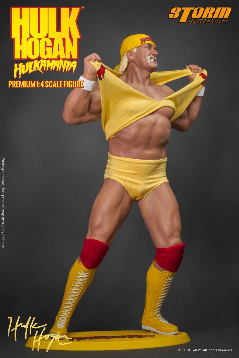 The hulk hogan-9855