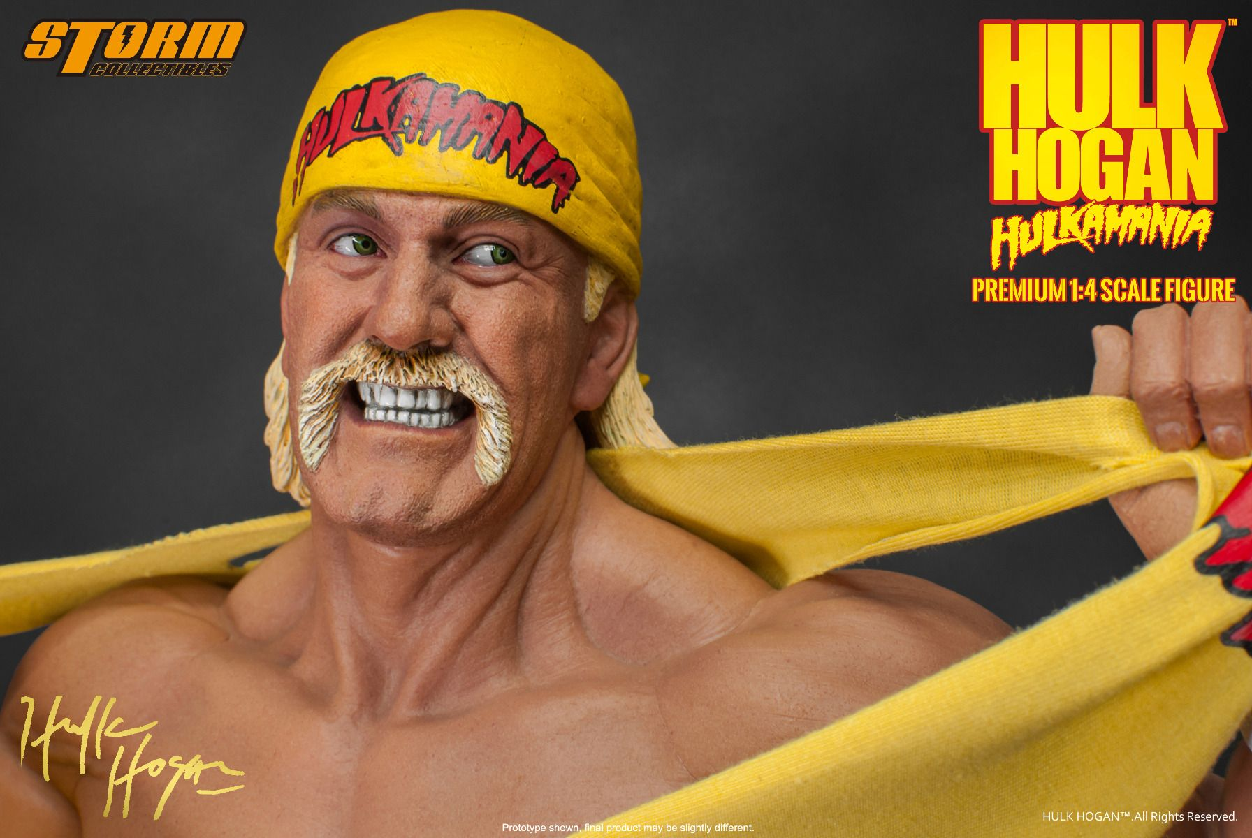 Young hulk hogan pictures-7758