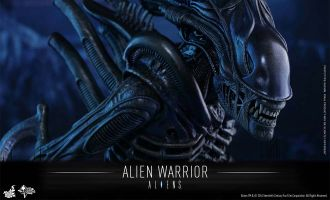 HOT TOYS MMS362 ALIENS ALIEN WARRIOR