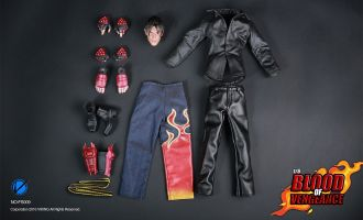 VIKING FS009 JIN KAZAMA BLOOD OF VENGEANCE TEKKEN