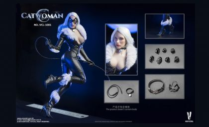 VERYCOOL-VCL-1001-ACCESSORIES-SERIES-CATWOMAN-SET-BANNER